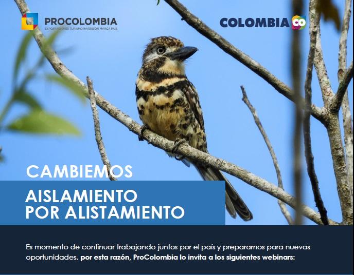 Webinar Gratuitos - Cambiemos el Aislamiento por el Alistamiento organiza Procolombia