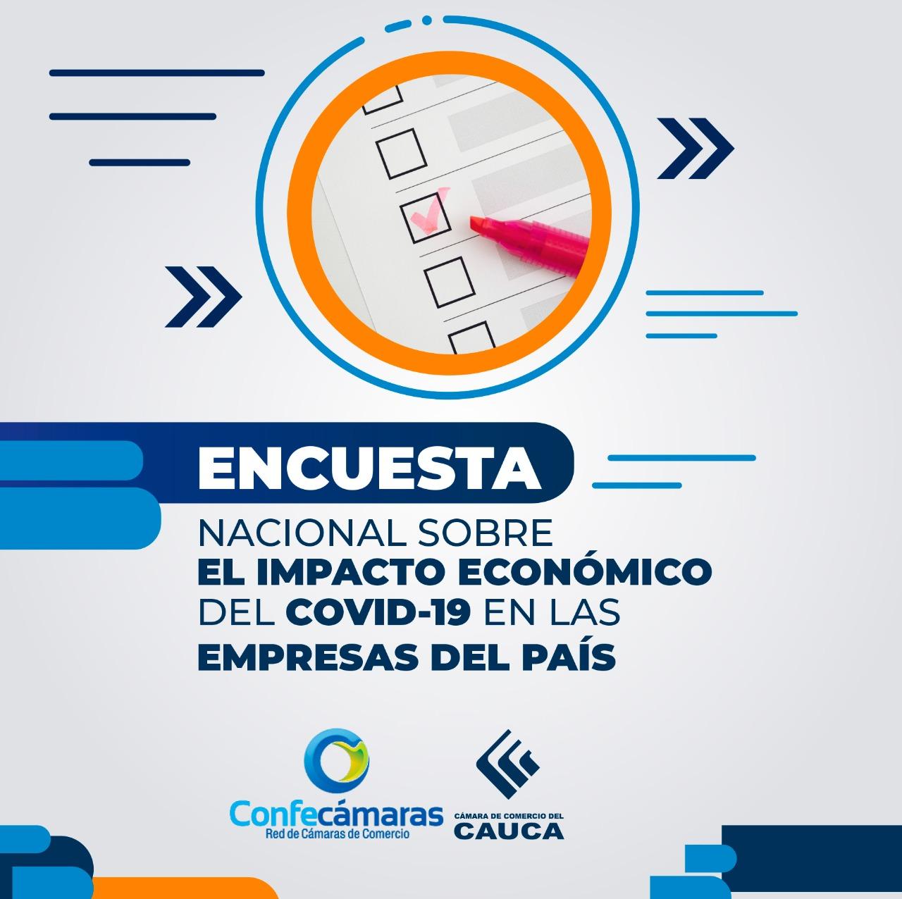 Encuesta Nacional sobre el Impacto Económico del COVID-19